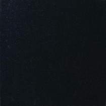 MS International 12 in. x 12 in. Absolute Black Granite Floor and Wall Tile