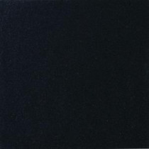 MS International Absolute Black 12 In. x 12 In. Polished Granite Floor & Wall Tile