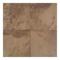 Daltile Aspen Lodge Cotto Mist 18 in. x 18 in. Porcelain Floor and Wall Tile (15.28 sq. ft. / case)