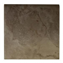Daltile Brancacci Fresco Caffe 6 in. x 6 in. Ceramic Surface Bullnose Wall Tile