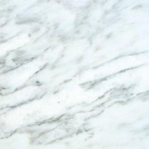 MS International Greecian White 18 in. x 18 in. Polished Marble Floor and Wall Tile (11.25 sq. ft. / case)