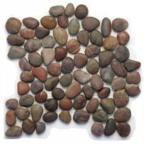 Solistone Anatolia 12 in. x 12 in. Honed Agate Natural Stone Pebble Mesh-Mounted Mosaic Tile (10 sq. ft. /case)